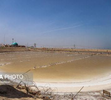 گزارشی از حضور خانواده های خراسان جنوبی در مناطق عملیاتی دفاع مقدس خوزستان
